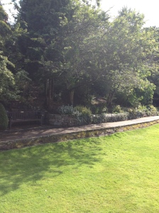 One of the pathways and the planting beds